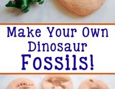 Homemade Dinosaur Fossils